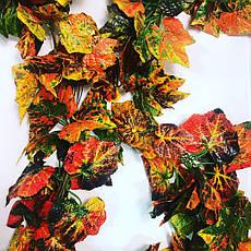 Лиана осенняя.Искусственная, осенняя,виноградная Лиана (14 метров), фото 3