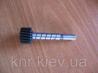 Шестерня привода спидометра ведомая (20 зубов) FAW-1031 (дв.2,67)