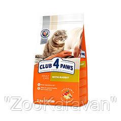Сухой корм Клуб 4 лапы для котов всех пород 14 кг