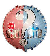 Фольгированный шар Мальчик или Девочка, 45*45 см