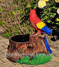Подставка для цветов кашпо Пень с попугаем, фото 3