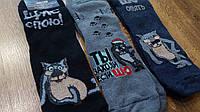 Мужские махровые носки «BRAVO» «Щас спою!» 27-29(41-44), фото 1