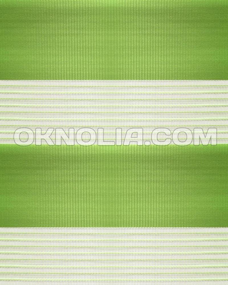 Тканевые ролеты День Ночь DN 207 зеленый, 100*170 см