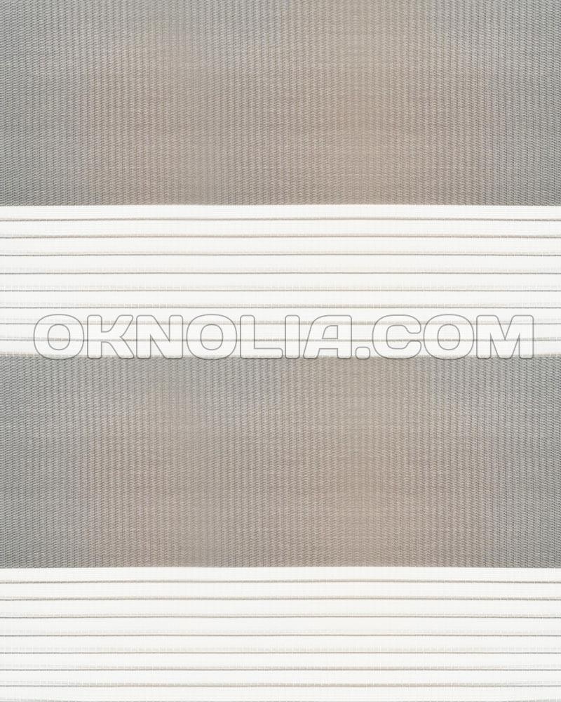 Тканевые ролеты День Ночь DN 211 серый, 100*170 см