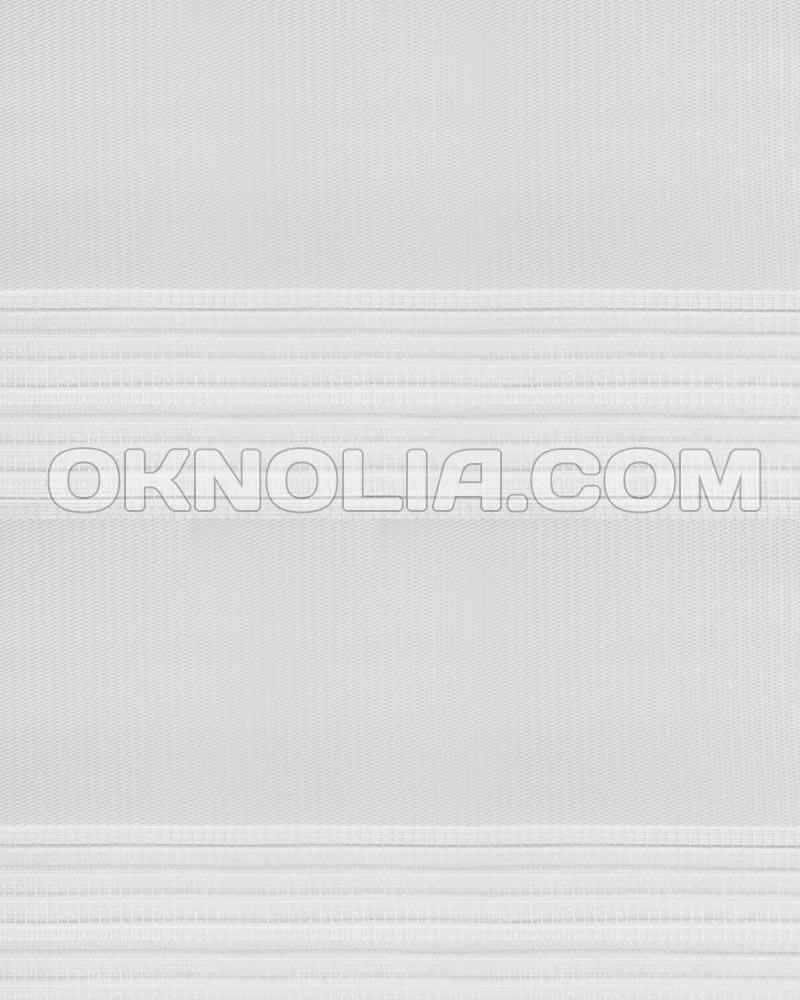 Тканевая ролета День Ночь DN 215 белый, 100*170 см