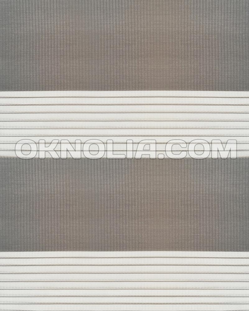 Тканевые ролеты День Ночь DN 210 темно-серый, 40*170 см