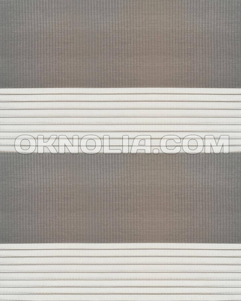 Тканевые ролеты День Ночь DN 210 темно-серый, 50*170 см