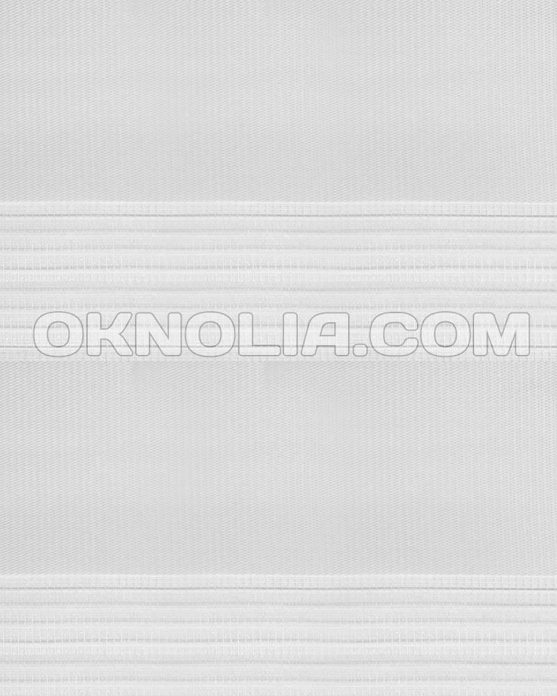 Тканевая ролета День Ночь DN 215 белый, 50*170 см