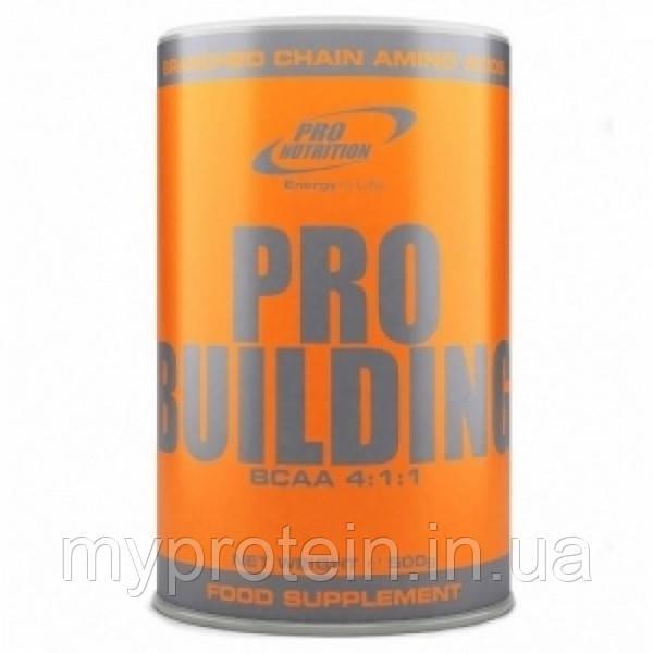 Бца Pro Building BCAA 4:1:1 (500 g)