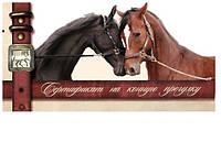 Подарочный сертификат на индивидуальный урок по верховой езде