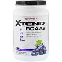Scivation, Xtend, BCAAs, Grape, 41.4 oz (1174 g)