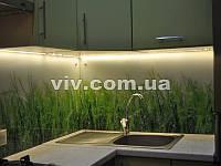 Скинали (кухонный фартук) из крашенного в один цвет стекла на заказ цена, купить Киев