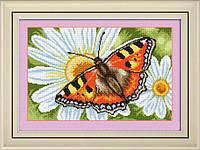 """009Т Набір для малювання камінням (полотно) """"Метелик на ромашці"""" LasKo"""