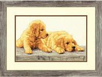 """70-35309 Набор для вышивания крестом DIMENSIONS Golden Retriever Puppies """"Щенки золотого ретривера"""""""