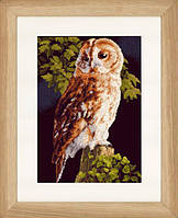 """PN-0146814 Набор для вышивки крестом LanArte Owl """"Сова"""""""