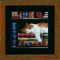 """PN-0147121 Набор для вышивки крестом Vervaco Cat sleeping on bookshelf """"Кошка, спящая на книжной полке"""""""
