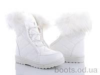 """Ботинки """"Zoom"""" № 88-803 white (р. 31-36).Оптом."""