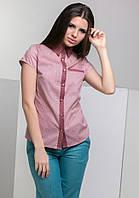 Блуза AZURI 5258-61 L Розовый (2000000038155)
