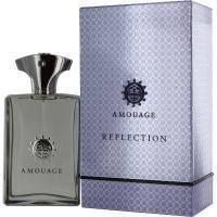 Amouage Reflection pour Homme - парфюмированная вода - 100 ml, мужская парфюмерия ( EDP53390 )