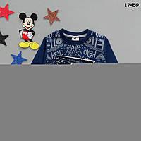 Теплая кофта для мальчика. 2, 4, 5, 6 лет, фото 1
