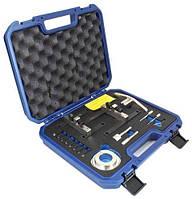 Набор фиксаторов (синхронизация) Ford EcoBoost 1.0 GTDI ASTA A-1GTDI