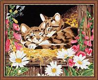 Раскраска по цифрам 40×50 см. Котята на сене Художник Джейн Мэдей, фото 1