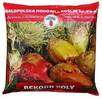 Семена Свекла кормовая Рекорд Поли, Польша / 1 кг