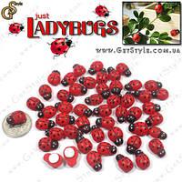 """Декоративные божьи коровки на липучке - """"Ladybugs"""" - 50 шт. , фото 1"""
