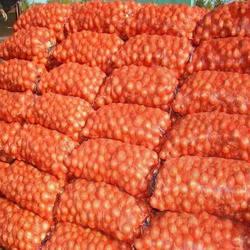 Семена Боско F1 — лук желтый, репчатый, 250 000 семян, фото 2