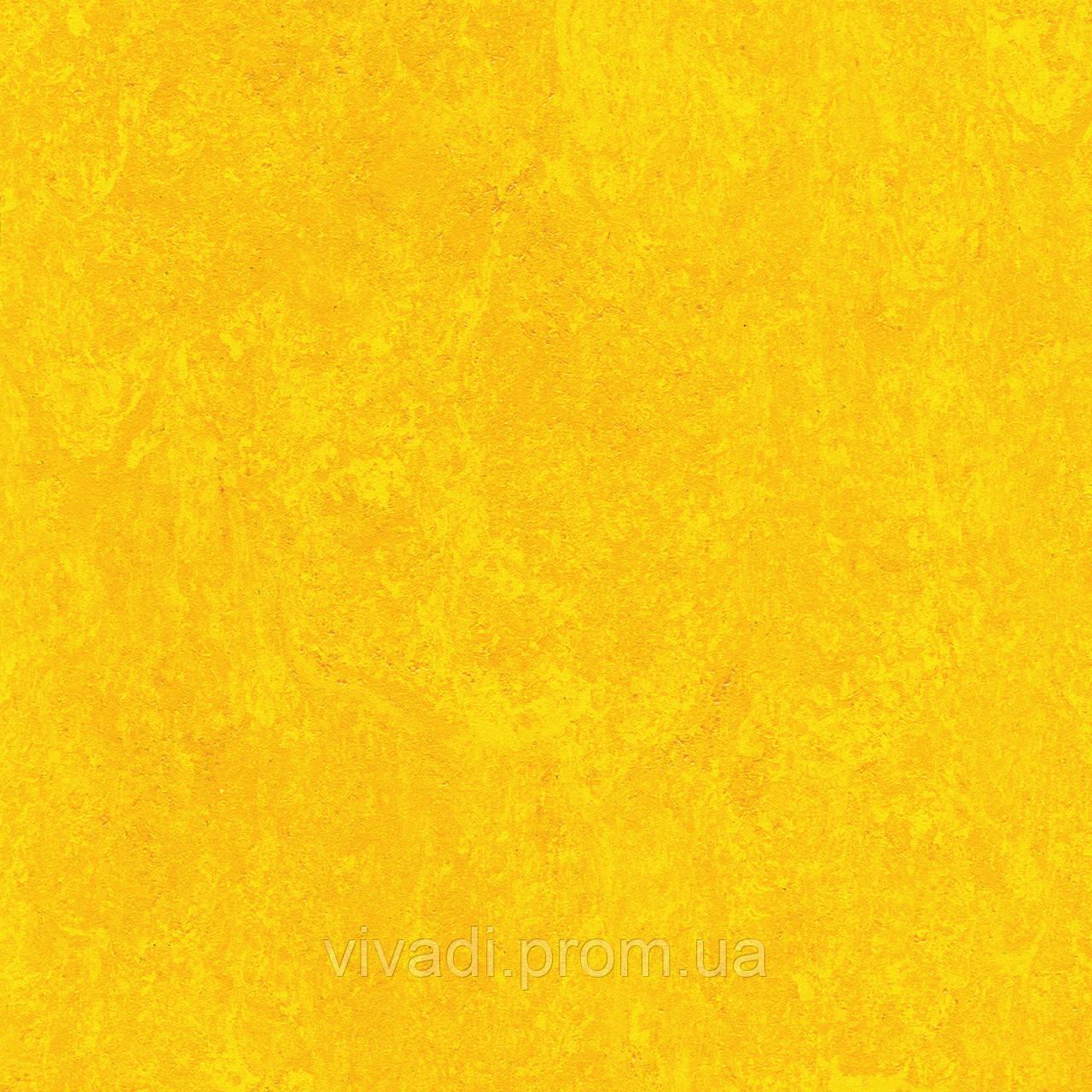 Натуральний лінолеум Marmorette PUR - колір 125-172