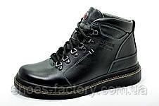 Зимние кожаные ботинки Kardinal, мужские, фото 2