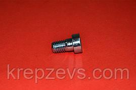 Винт М5 DIN 6912 оцинкованный