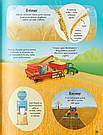Усе починається з насіння… як росте їжа. Книга Емілі Боун, фото 4