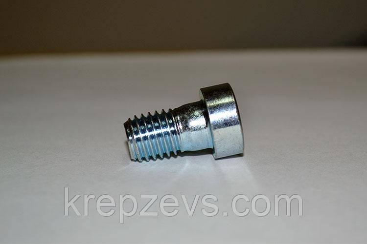 Винт М20 DIN 6912 оцинкованный