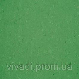 Натуральний лінолеум Colorette LPX - колір 131-006