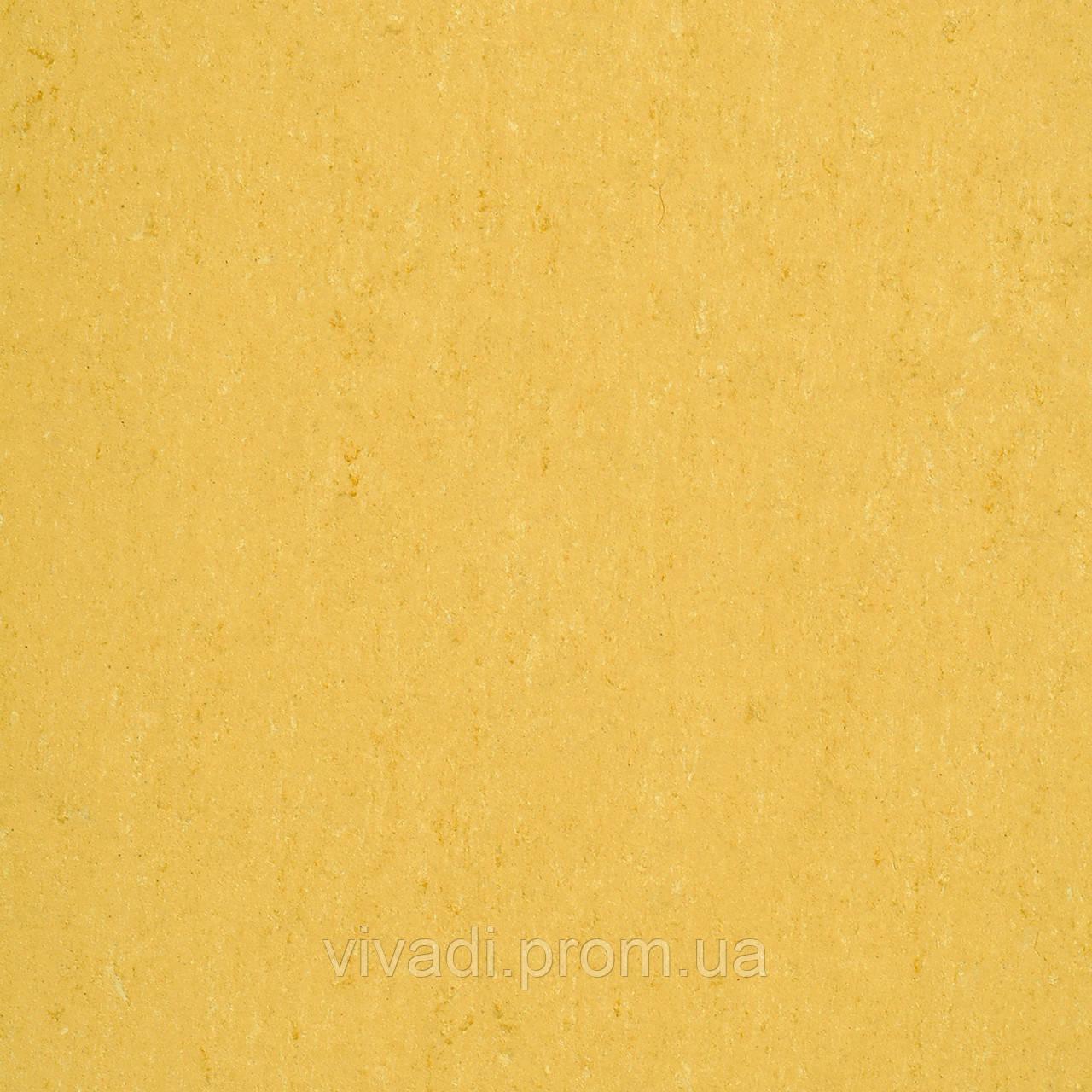 Натуральний лінолеум Colorette LPX - колір 131-071