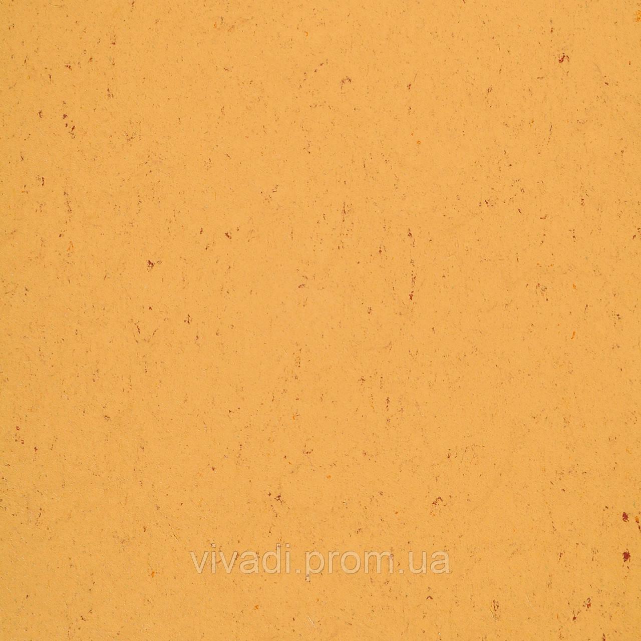 Натуральний лінолеум Colorette LPX - колір 131-073