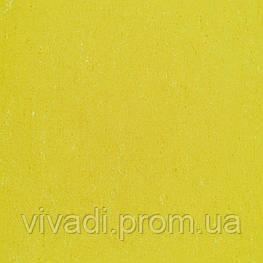 Натуральний лінолеум Colorette PUR - колір 137-001