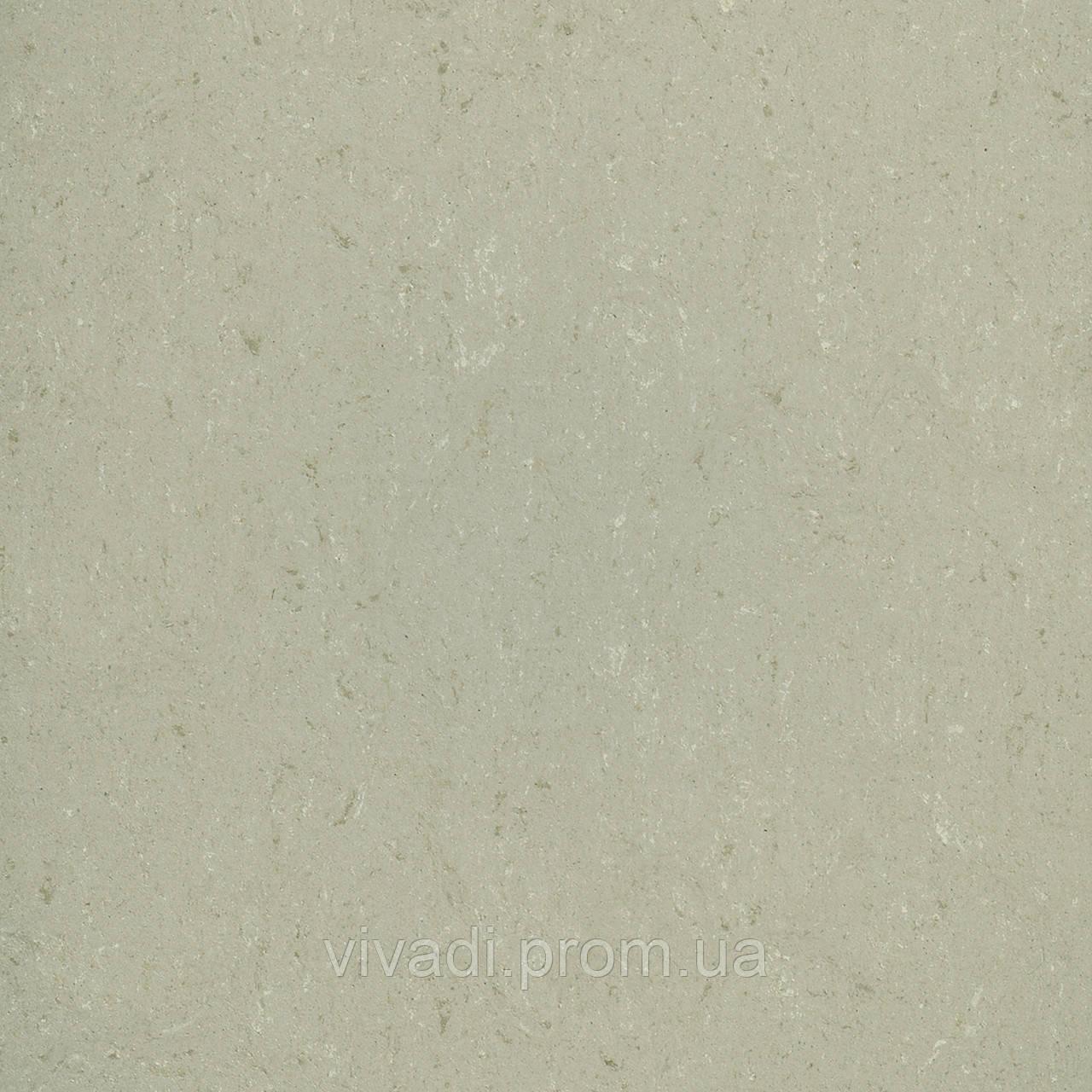 Натуральний лінолеум Colorette PUR - колір 137-012