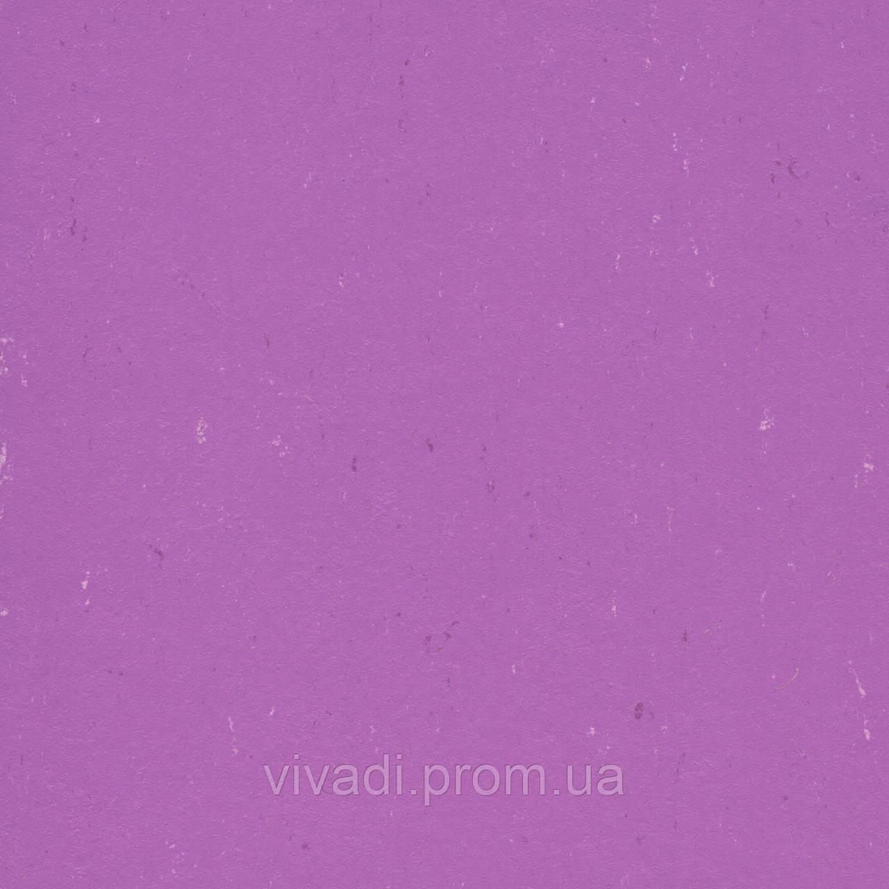 Натуральний лінолеум Colorette PUR - колір 137-110