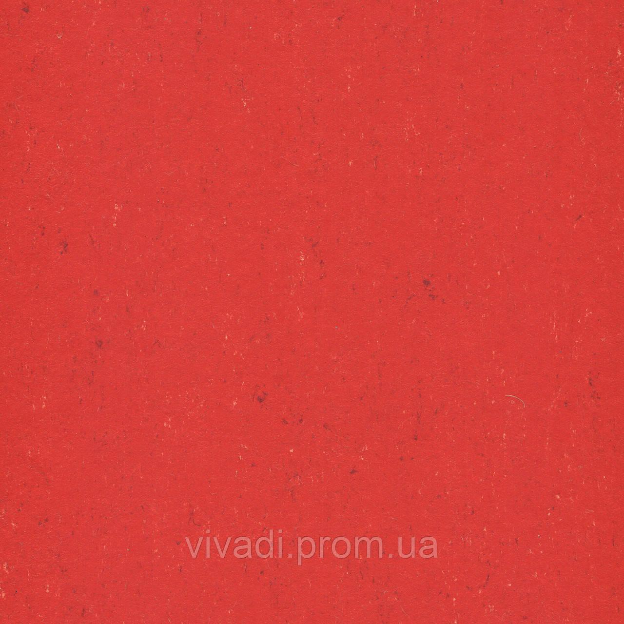 Натуральний лінолеум Colorette PUR - колір 137-118