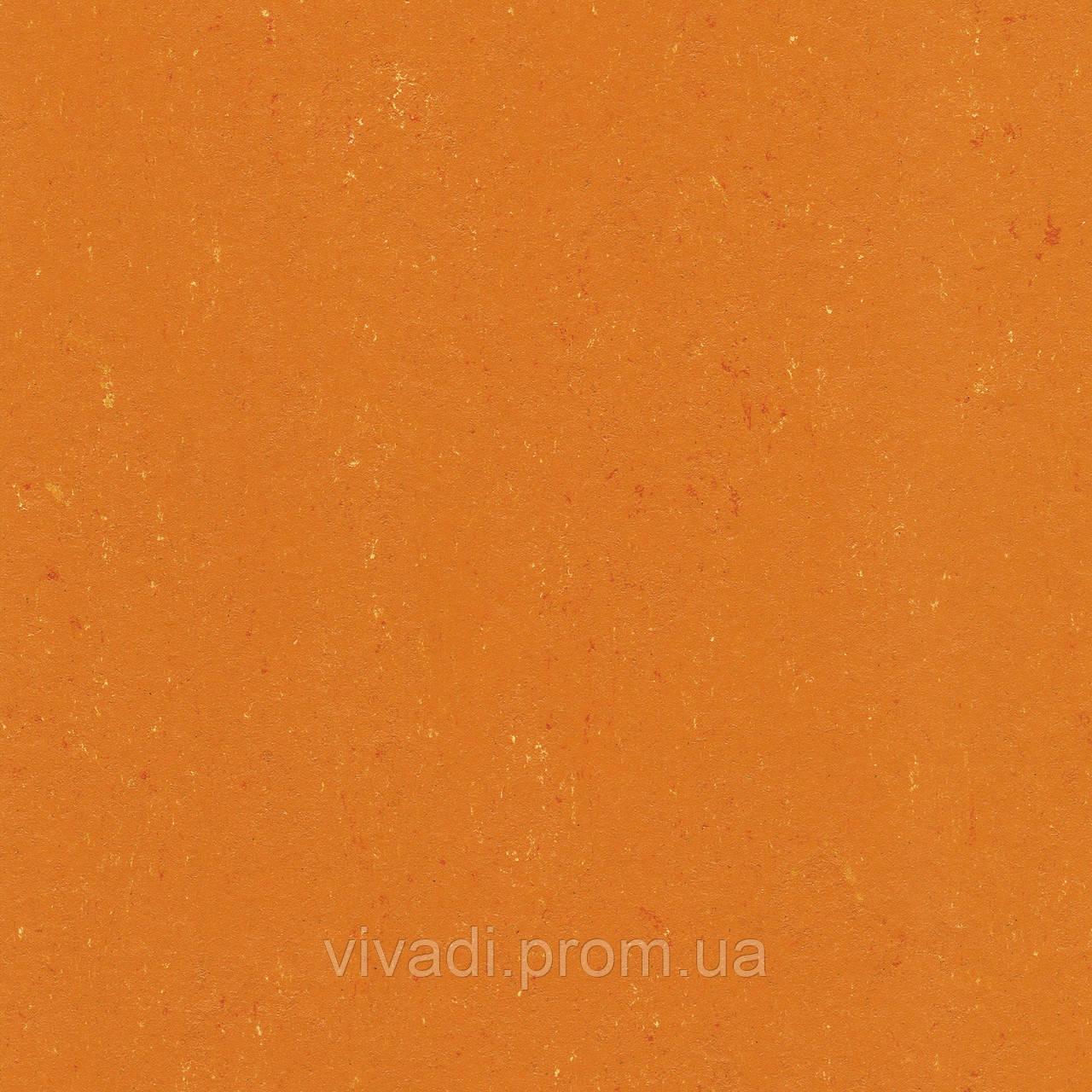 Натуральний лінолеум Colorette PUR - колір 137-170