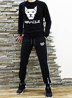 Мужской спортивный  костюм Miracle свитшот штаны, фото 1