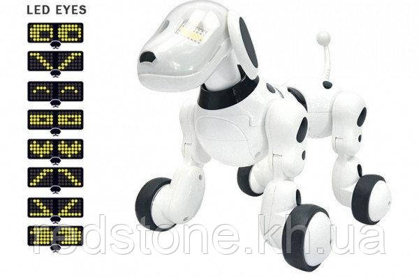 Собака-робот Zoomer 619 интерактивная на р/у на аккумуляторах