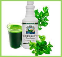 Хлорофилл жидкий (хлорофил) НСП. Натуральные витамины для спортсменов