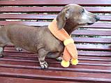 Шарф для собаки или кота декоративный, фото 6