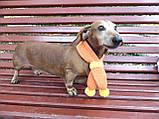 Шарф для собаки или кота декоративный, фото 9