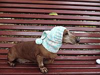 Шапка для маленькой собачки вязанная универсальная