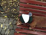 Шапка для собаки вязанная универсальная, фото 7