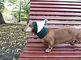 Шапка для собаки вязанная универсальная, фото 5